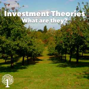 Investment Theory Investment Theories