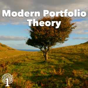 Modern Portfolio Theory MPT