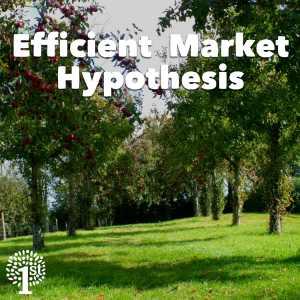 Efficient Market Hypothesis, EMT