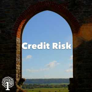 Credit risk - Church View Somerset