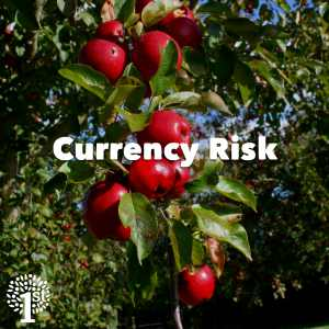Currency Risk - Apples Somerset