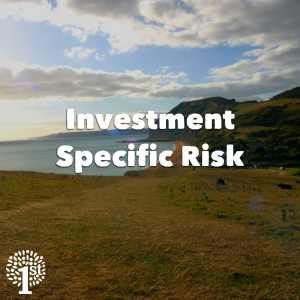 Investment Specific Risk - Dorset Coast