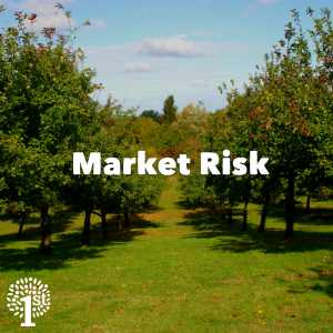 Market Risk - Apple Orchard Somerset