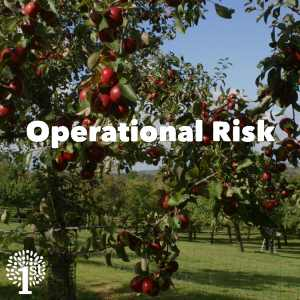 Operational Risk - Apple Tree