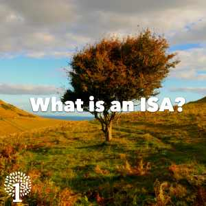 What is an ISA, tree on hill.